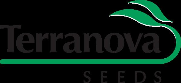 Home - Terranova Seeds Australia